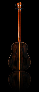 back of model sj acoustic bass